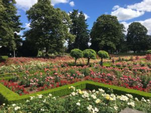 Visitors love our beautiful Portland rose gardens