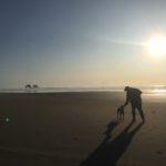 Dog Friendly Rockaway Beach