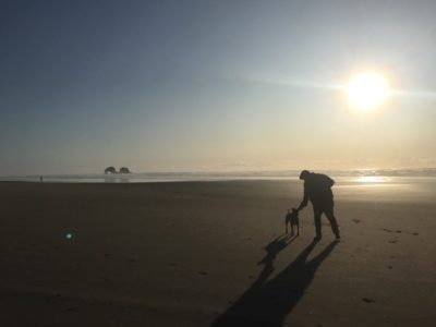 Dog Friendly Rockaway Beach